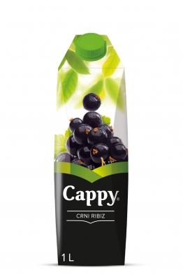 Cappy Crni ribiz