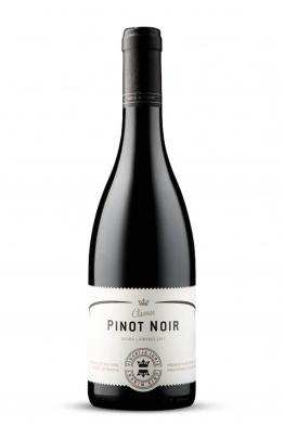 Iuris Pinot Crni kv.